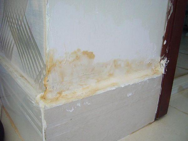 Tình trạng nước thấm ngược vào tường gây ra nấm mốc